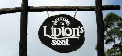 Lipton seat 1300x600