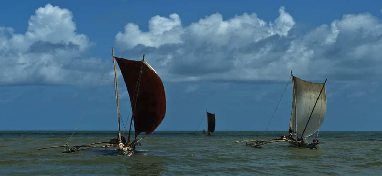Negombo Bateaux