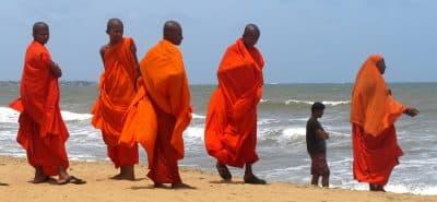 Negombo Moines