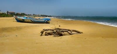 Negombo Plage(3)