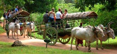 village-safari